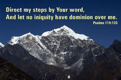 Direct my steps by Your word, And let no iniquity have dominion over me. ~ Psalms 119:133